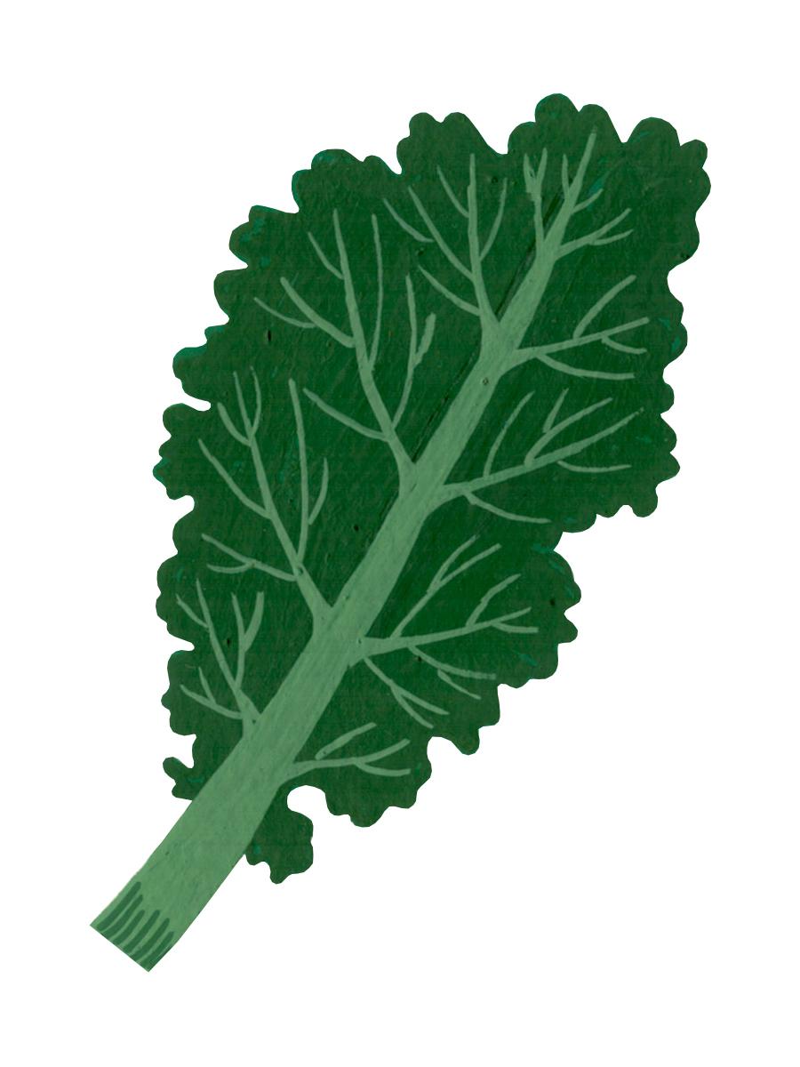 Thumbnail for kale