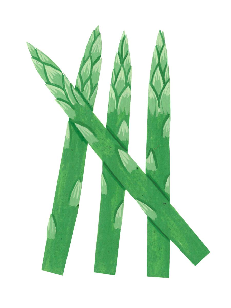 Thumbnail for asparagus