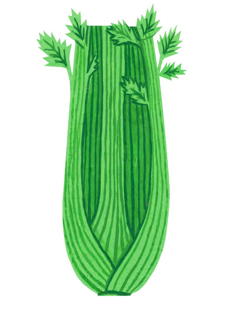 Thumbnail for celery