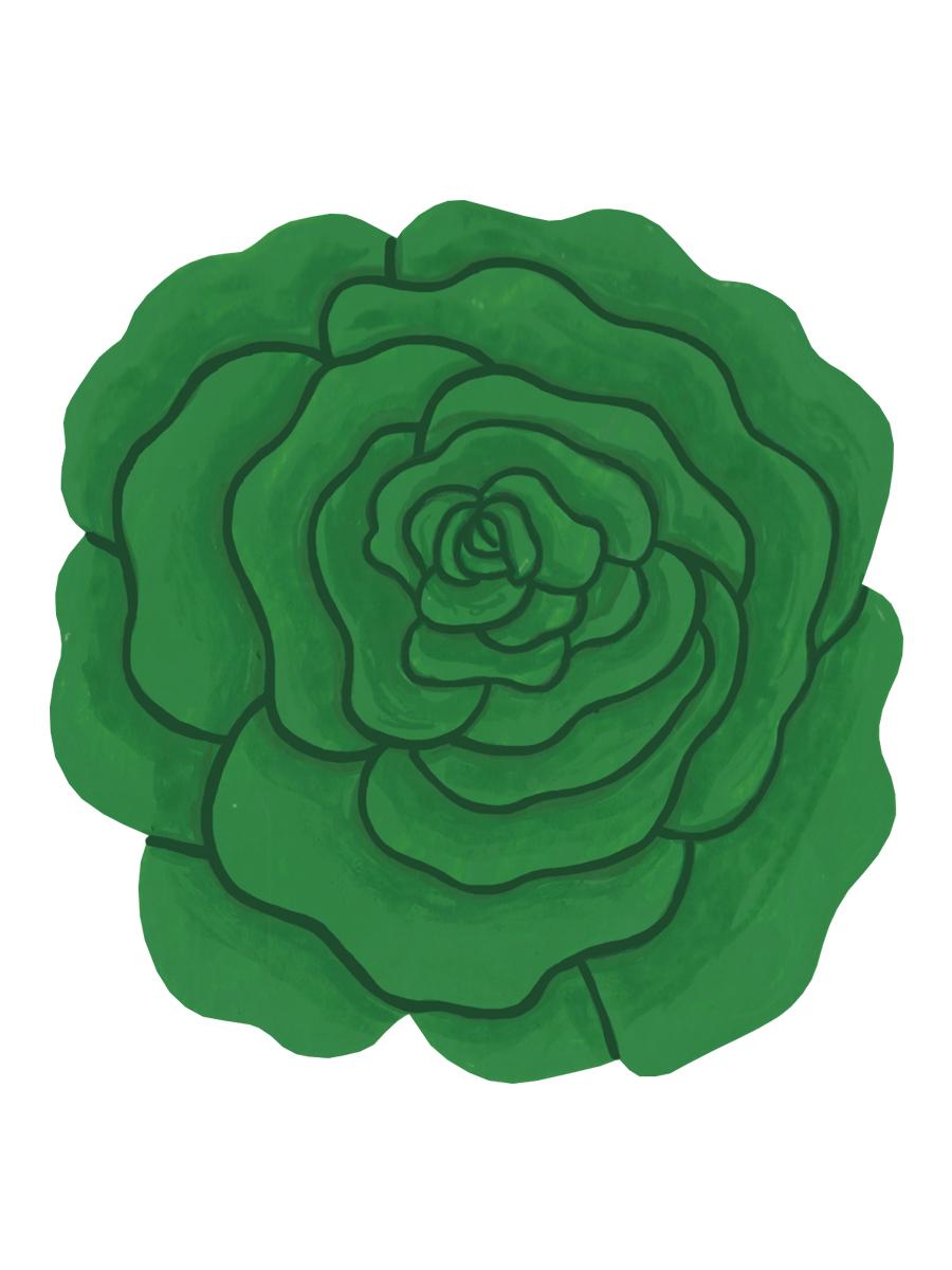 Thumbnail for round lettuce