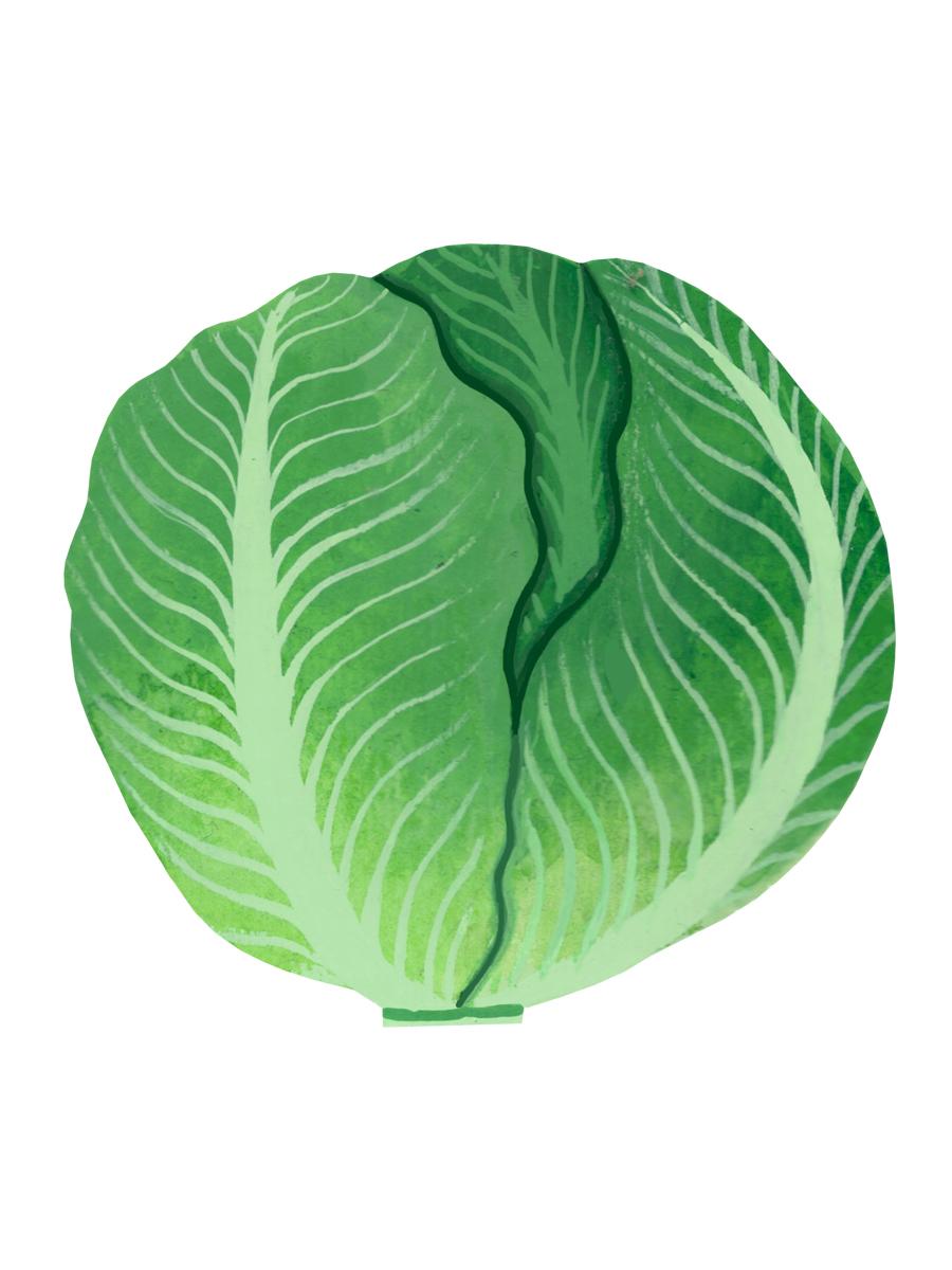 Thumbnail for iceberg lettuce