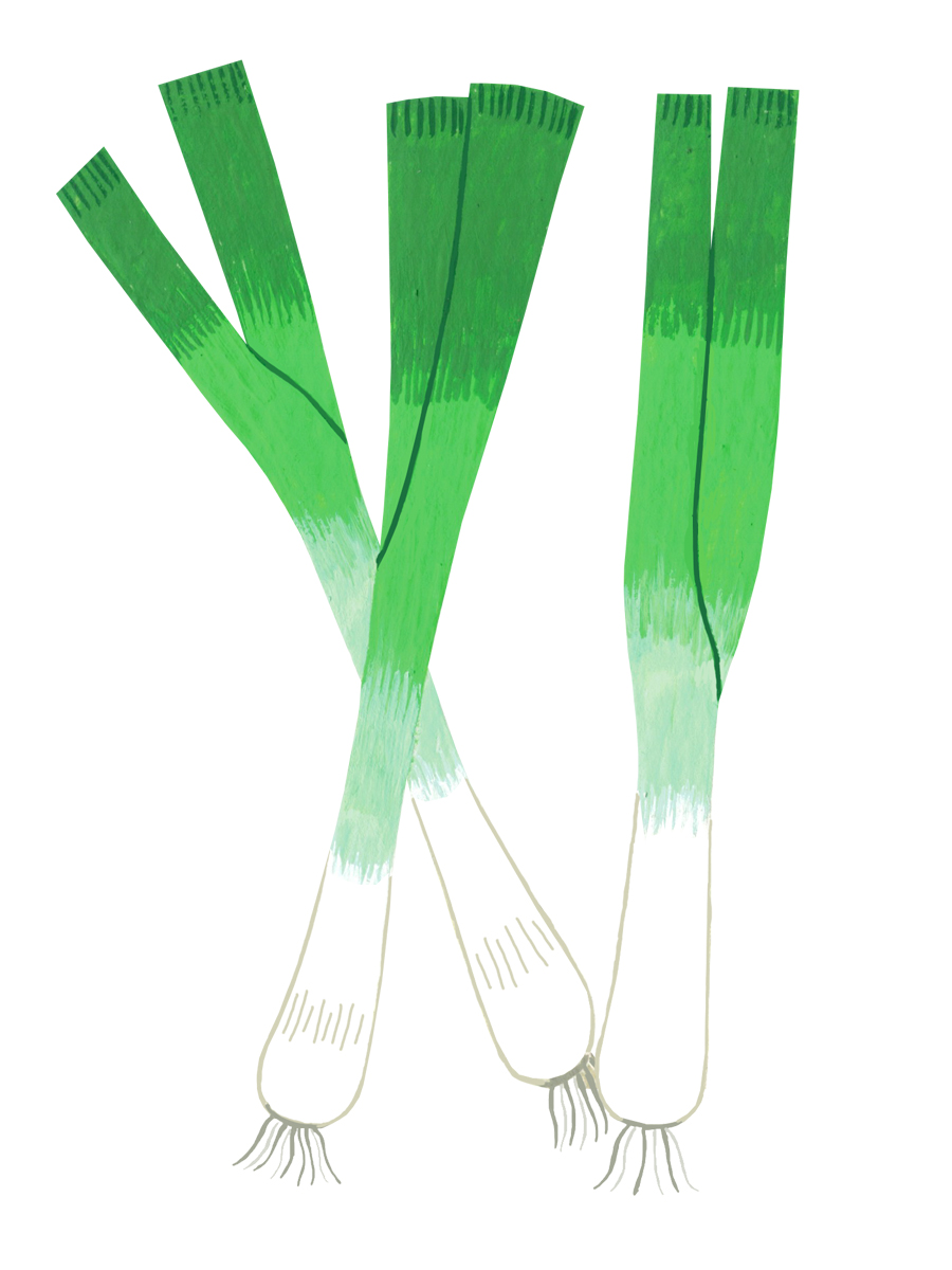Thumbnail for spring onions